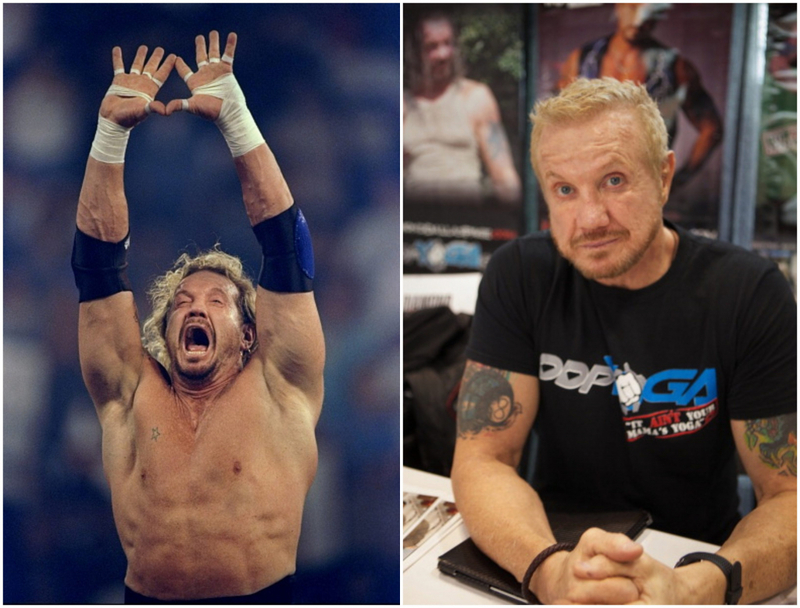 what your favorite wwe stars from the past are up to now